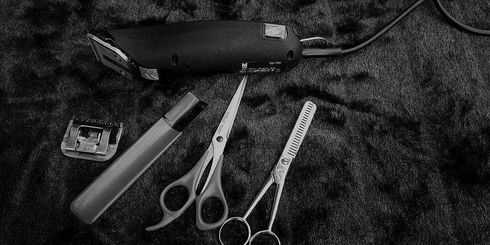 Kiest u voor een trimsalon of scheert u liever zelf?